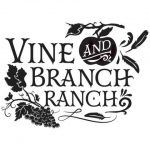 Vine and Branch Logo