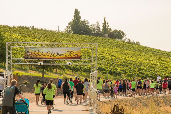 sunny-slope-wine-trail-5